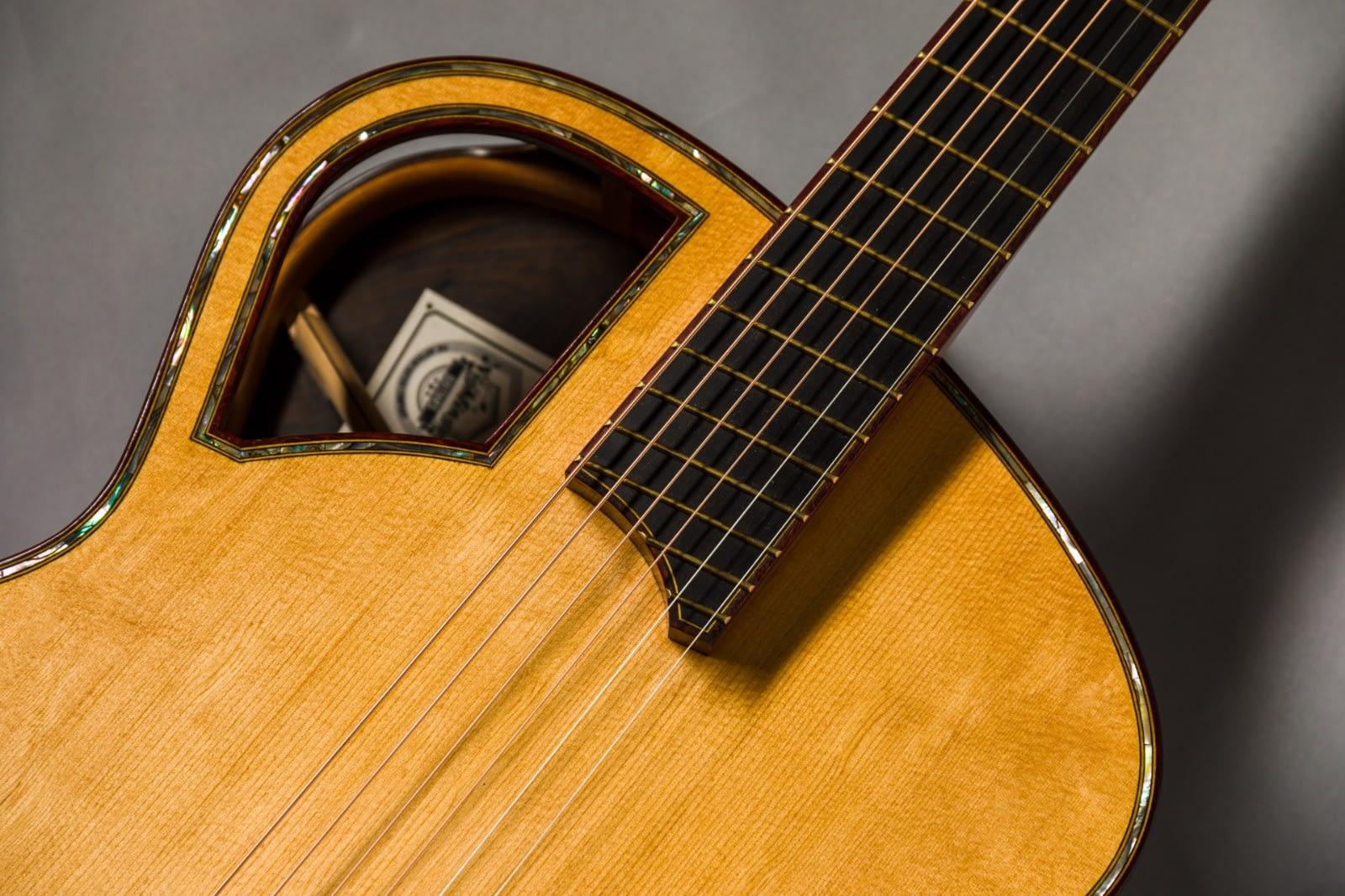 Insight handmade steelstring guitar aaa bearclaw sitka spruce top padauk binding fan fanned fret frets ziricote back and sides