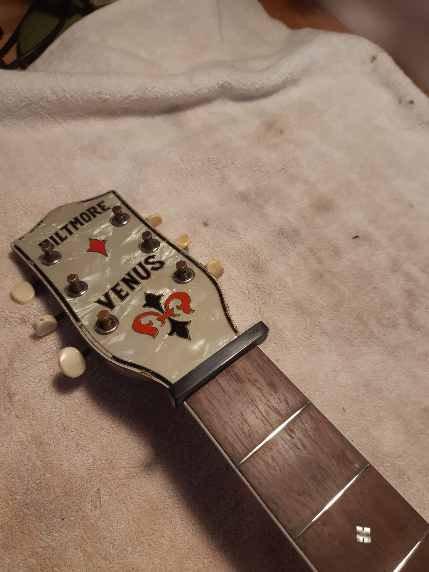 Vintage Archtop New Buffalo Horn Nut Guitar Repair Stroud